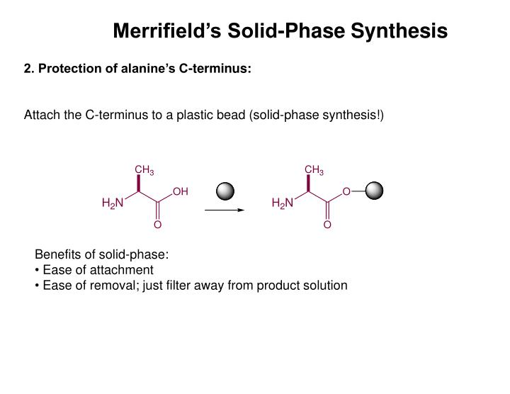 Merrifield's Solid-Phase Synthesis