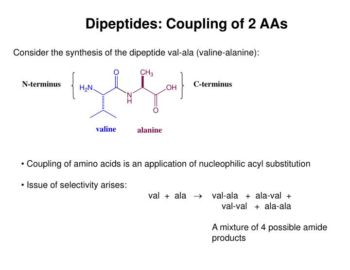 Dipeptides: Coupling of 2 AAs