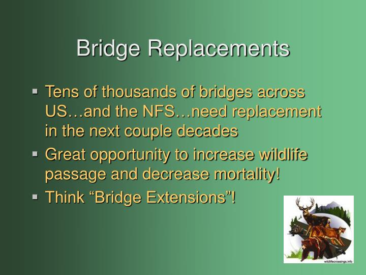 Bridge Replacements