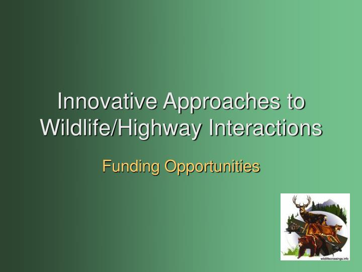 Innovative approaches to wildlife highway interactions