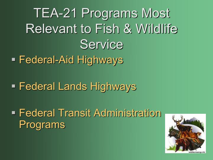 Tea 21 programs most relevant to fish wildlife service