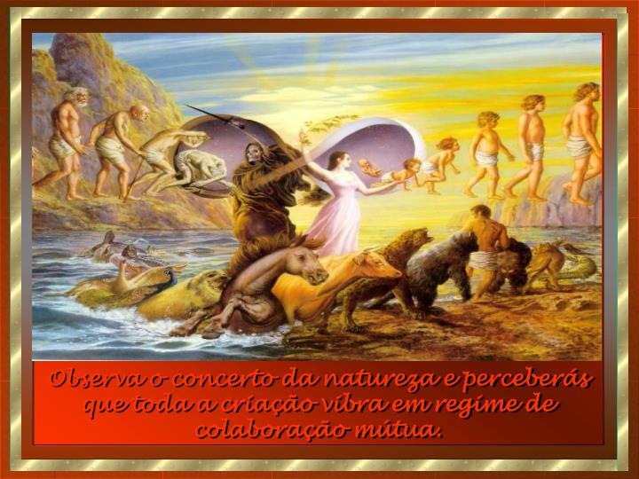 Observa o concerto da natureza e perceberás que toda a criação vibra em regime de colaboração mútua.