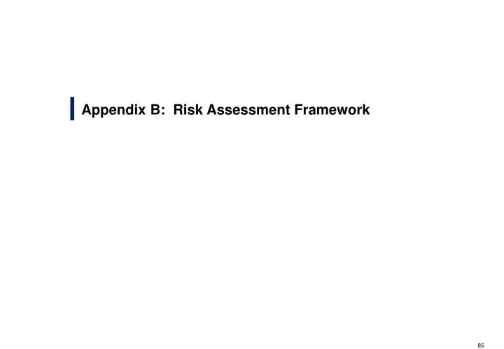 Appendix B:  Risk Assessment Framework