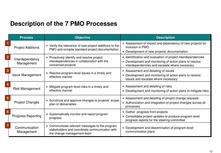 Description of the 7 PMO Processes