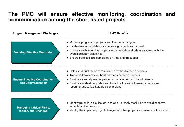 Program Management Challenges