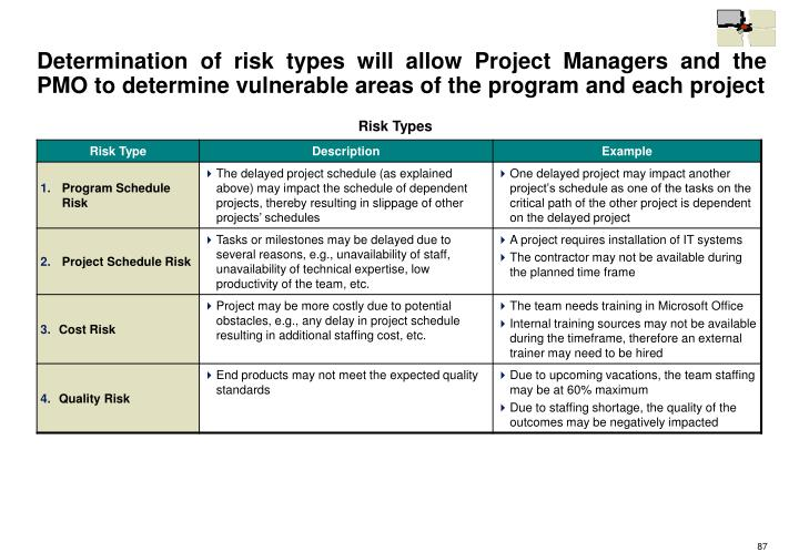Determination of risk types will allow Project Managers and the PMO to determine vulnerable areas of the program and each project