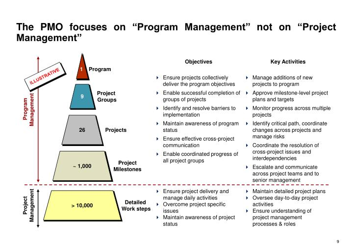 """The PMO focuses on """"Program Management"""" not on """"Project Management"""""""