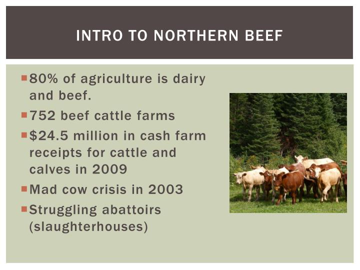 Intro to Northern Beef