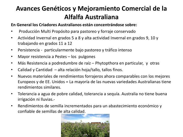 Avances Genéticos y Mejoramiento Comercial de la Alfalfa Australiana