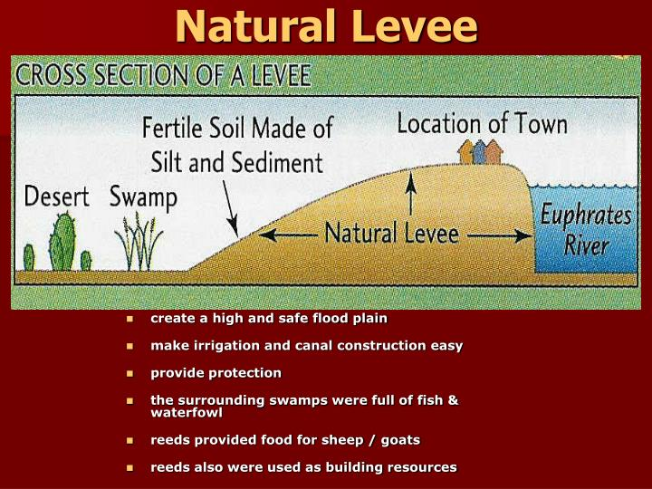 Natural Levee
