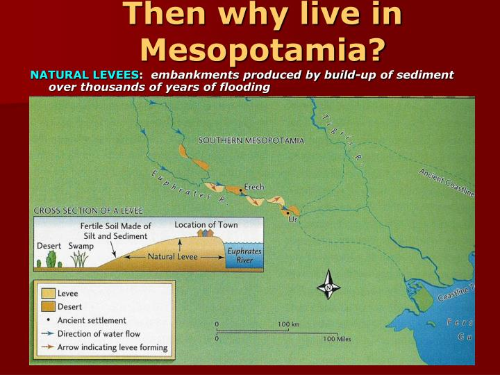 Then why live in Mesopotamia?