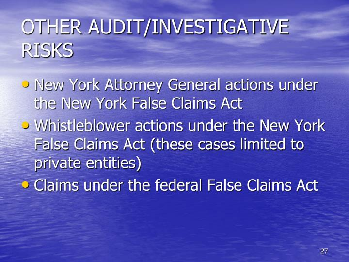 OTHER AUDIT/INVESTIGATIVE RISKS