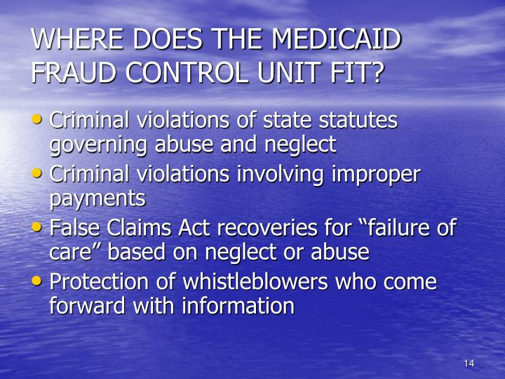 WHERE DOES THE MEDICAID FRAUD CONTROL UNIT FIT?