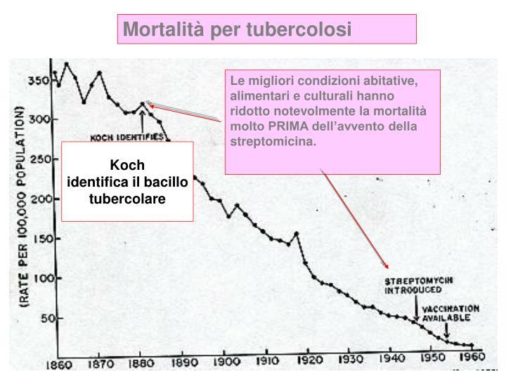 Mortalità per tubercolosi