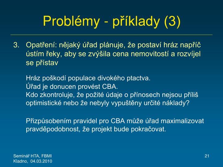 Problémy - příklady (3)