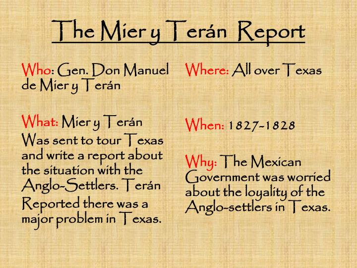 The mier y ter n report