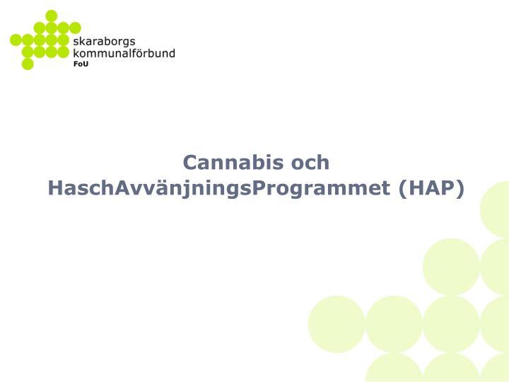 Cannabis och HaschAvvänjningsProgrammet (HAP)