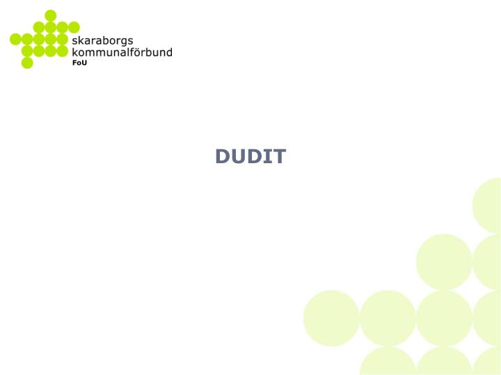DUDIT