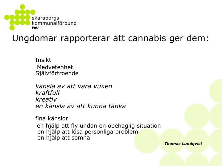 Ungdomar rapporterar att cannabis ger dem: