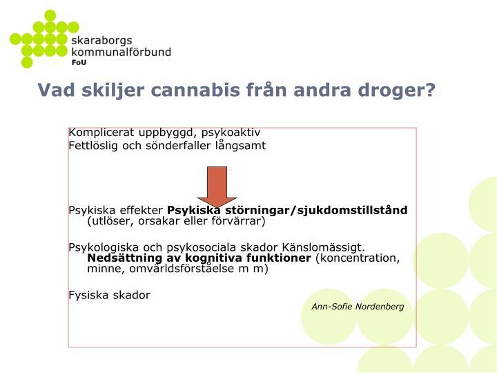 Vad skiljer cannabis från andra droger?