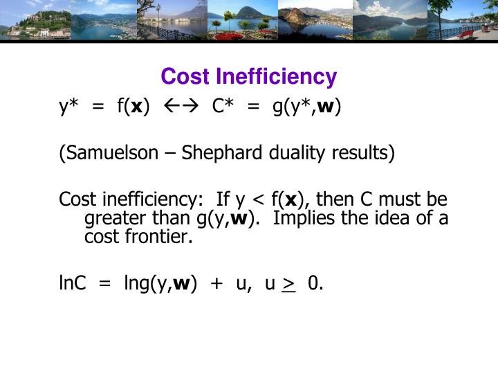 Cost Inefficiency