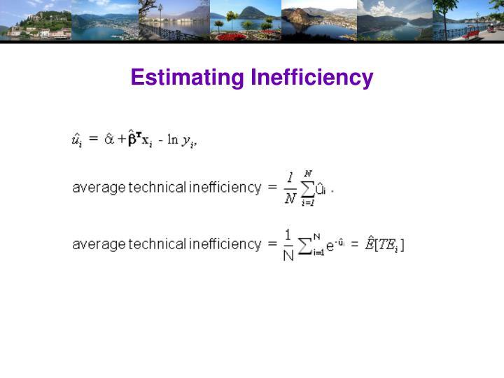 Estimating Inefficiency