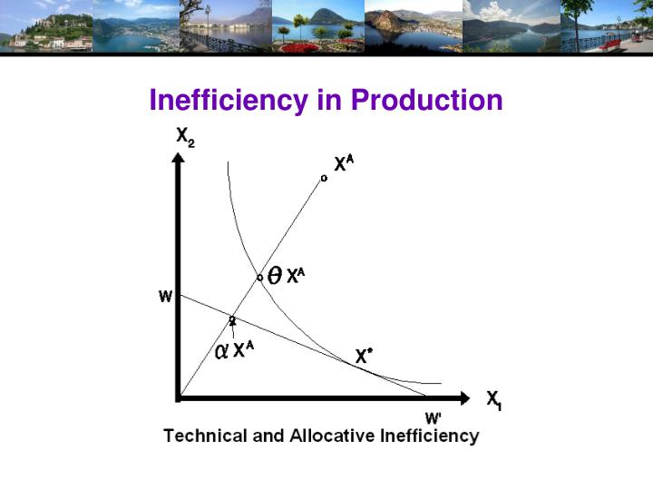 Inefficiency in Production