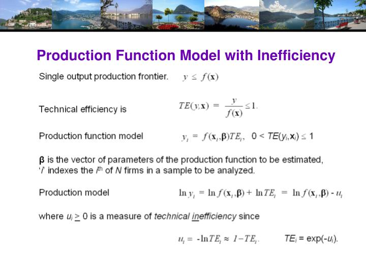 Production Function Model with Inefficiency