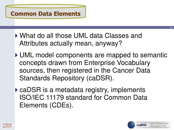 Common Data Elements