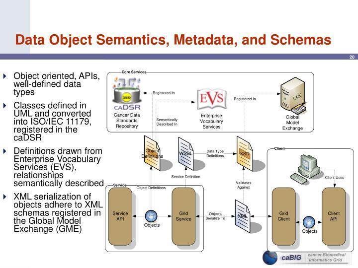 Data Object Semantics, Metadata, and Schemas