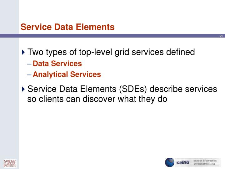 Service Data Elements