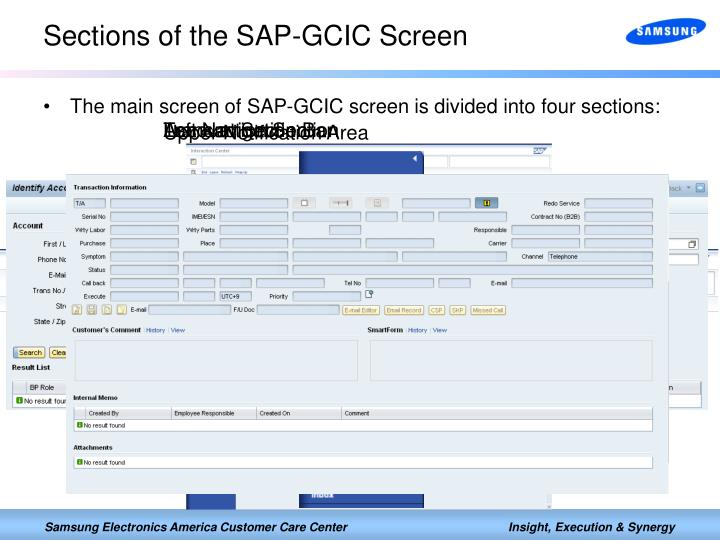 Sections of the SAP-GCIC Screen
