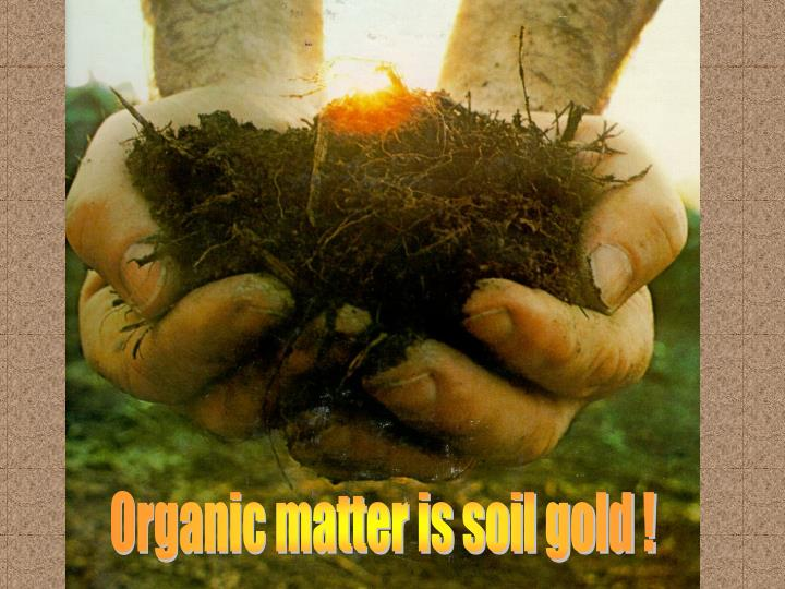 Organic matter is soil gold !