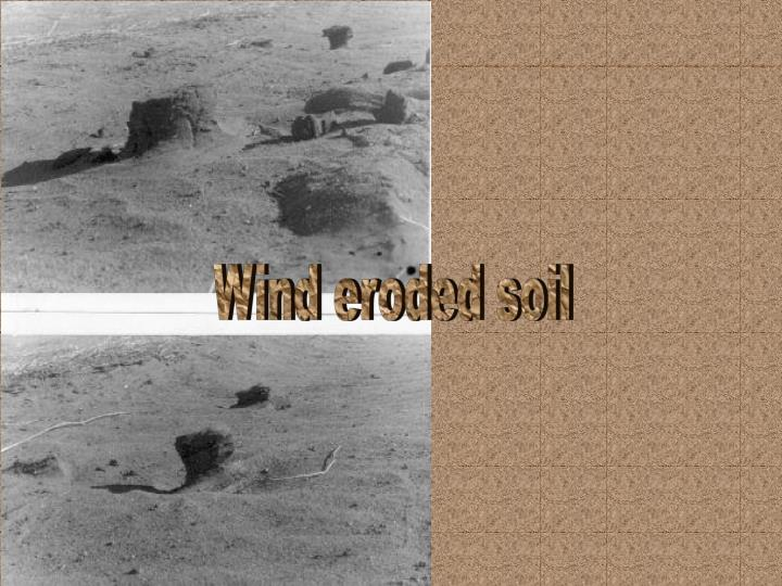 Wind eroded soil