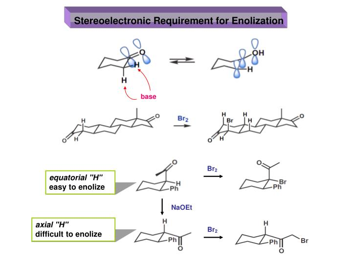 Stereoelectronic Requirement for Enolization