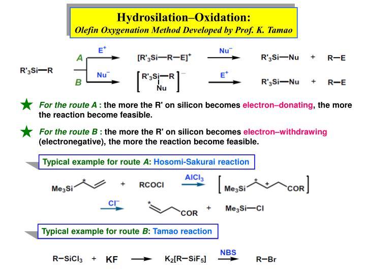 Hydrosilation–Oxidation: