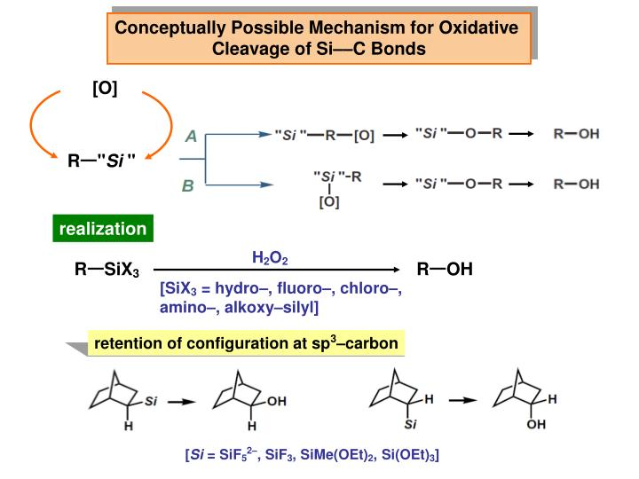 Conceptually Possible Mechanism for Oxidative