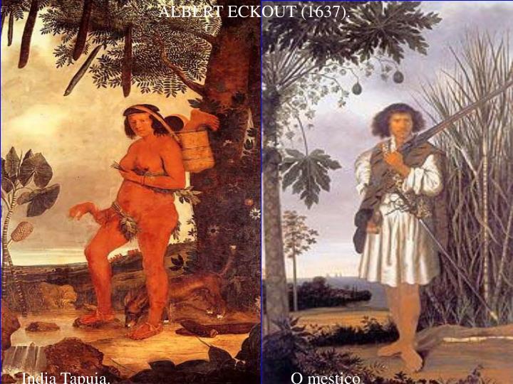 ALBERT ECKOUT (1637).