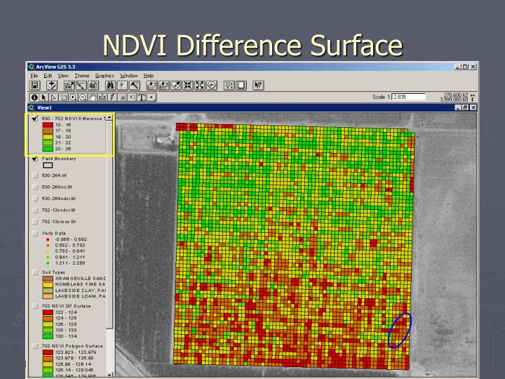 NDVI Difference Surface
