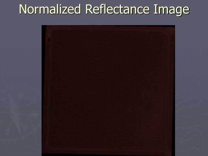 Normalized Reflectance Image