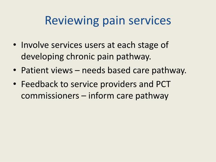 Reviewing pain services