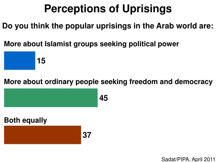 Perceptions of Uprisings