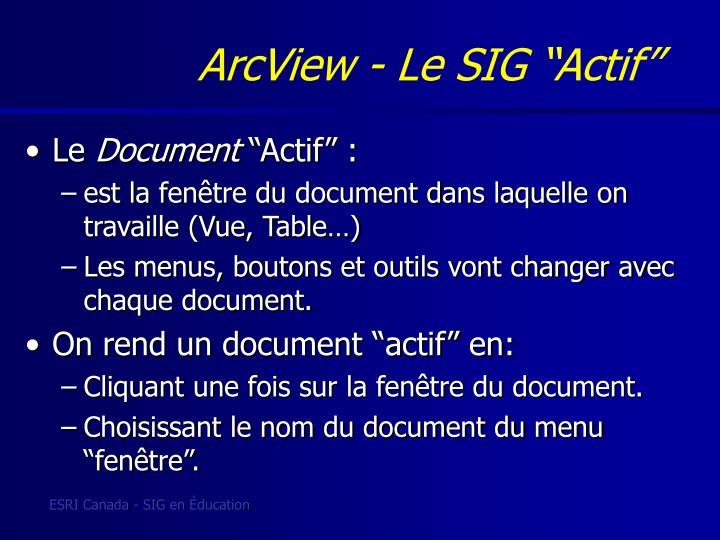 """ArcView - Le SIG """"Actif"""""""