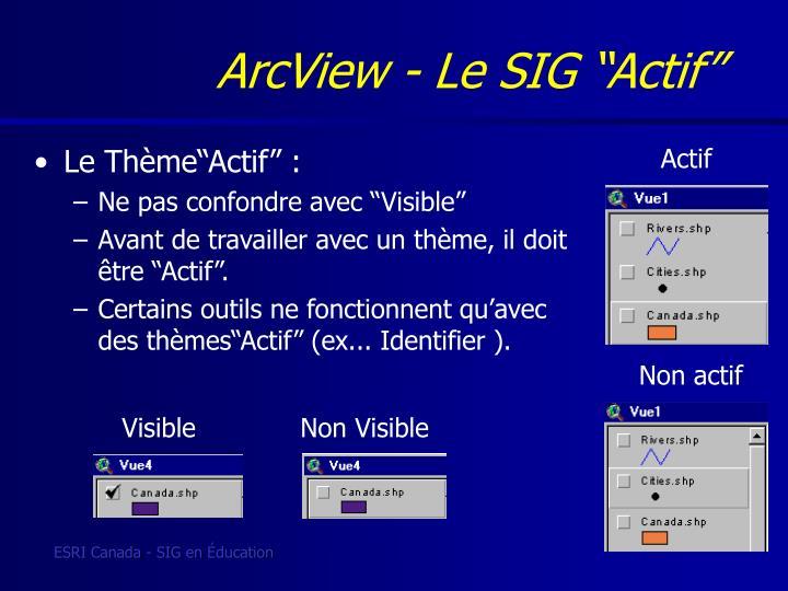"""ArcView - Le SIG """"Actif"""
