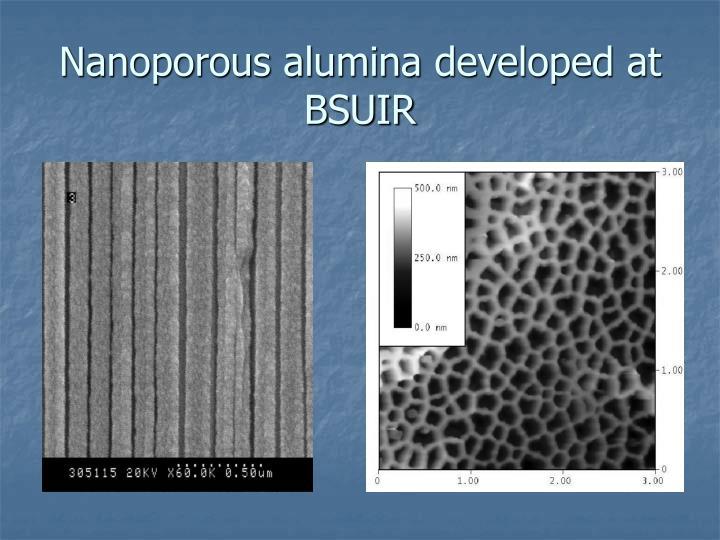 Nanoporous alumina developed at BSUIR