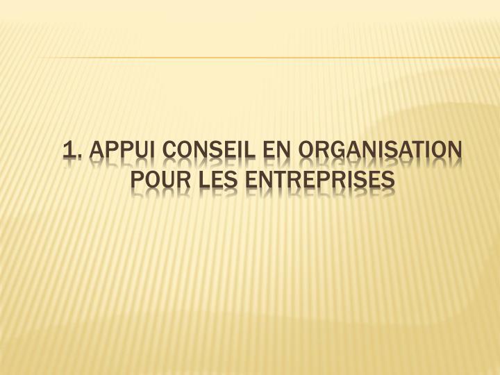 1. Appui conseil en organisation pour les entreprises