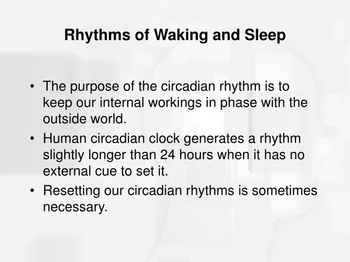 Rhythms of Waking and Sleep