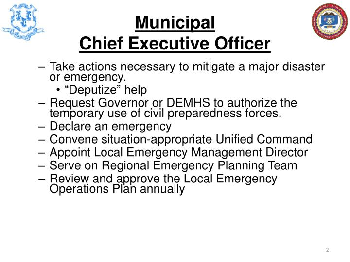 Municipal chief executive officer