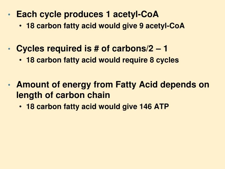 Each cycle produces 1 acetyl-