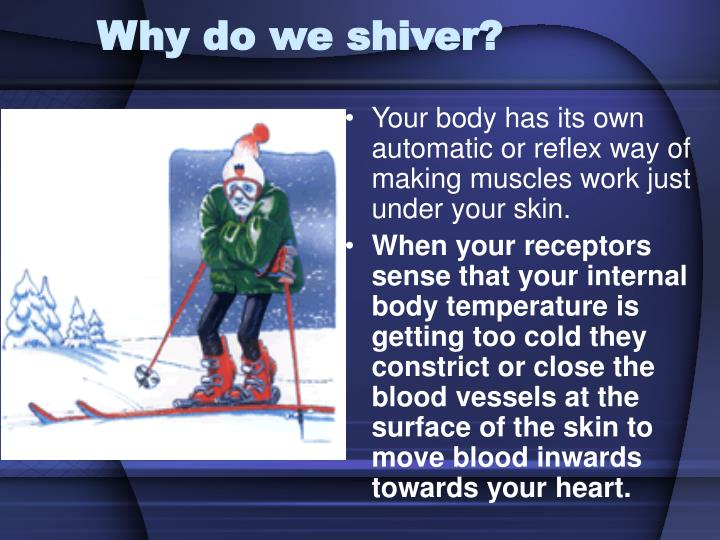 Why do we shiver?